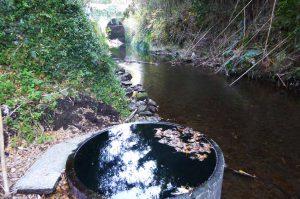 弘法井戸と石積橋の画像