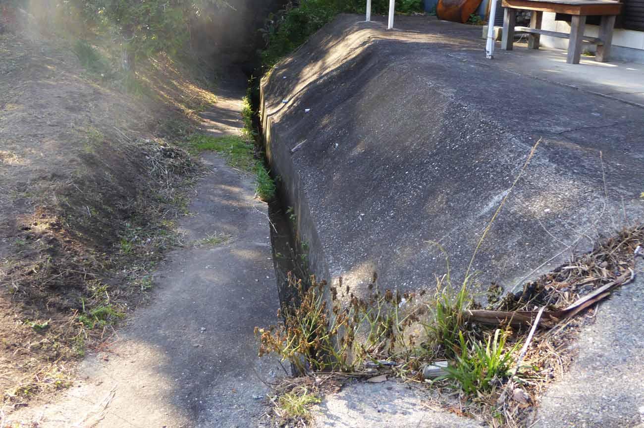 弘法井戸への細い道の画像