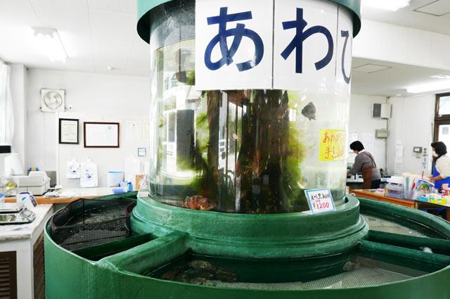 アワビの水槽の画像