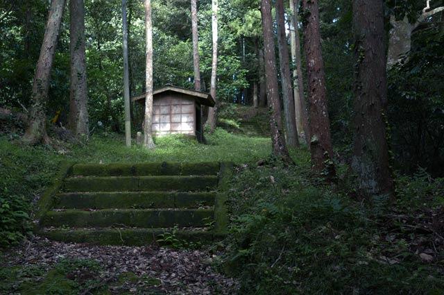 参道の階段の画像2