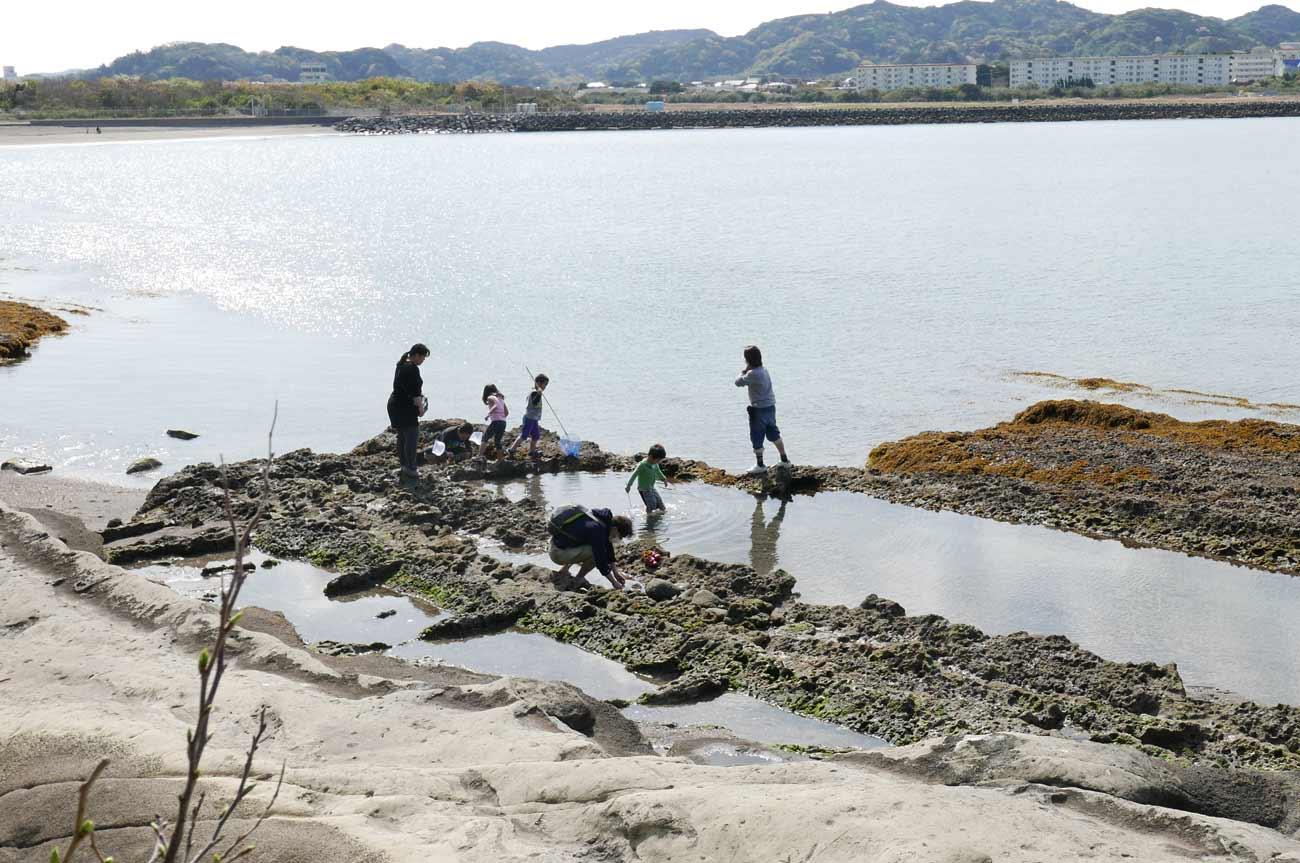 沖ノ島の磯遊びの画像