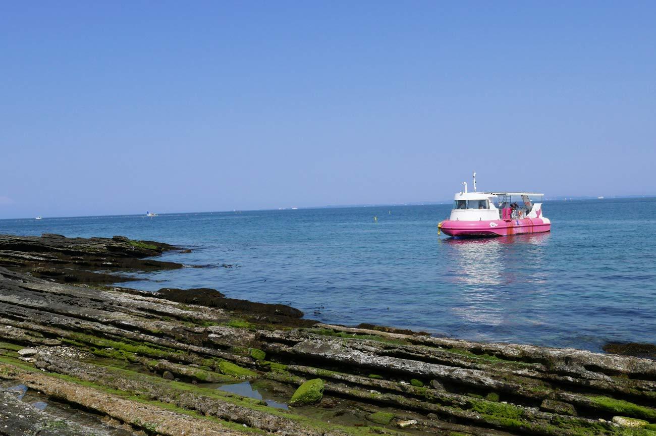 館山海中観光船の画像