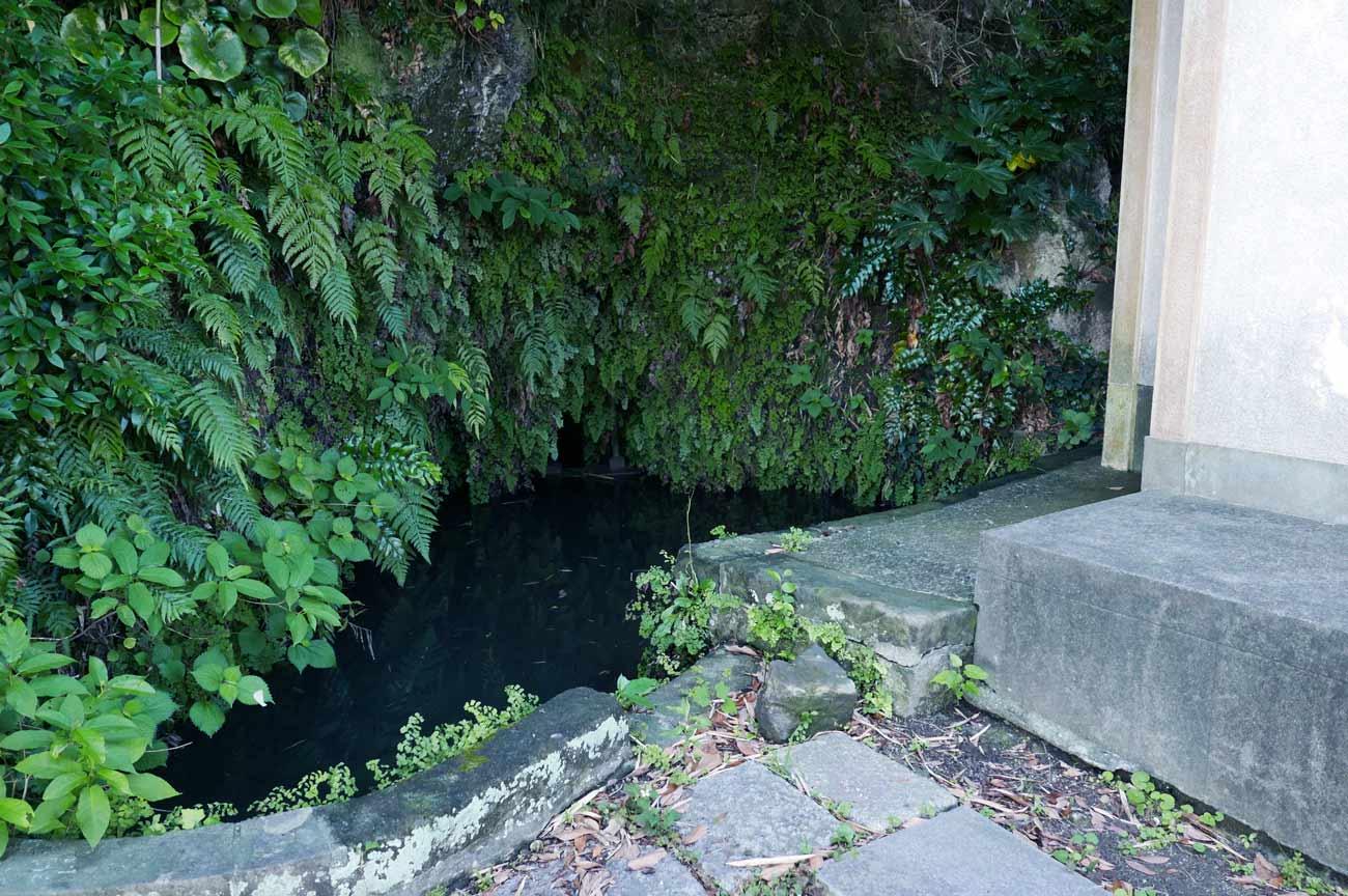 白岩弁財天拝裏の弁天池の画像