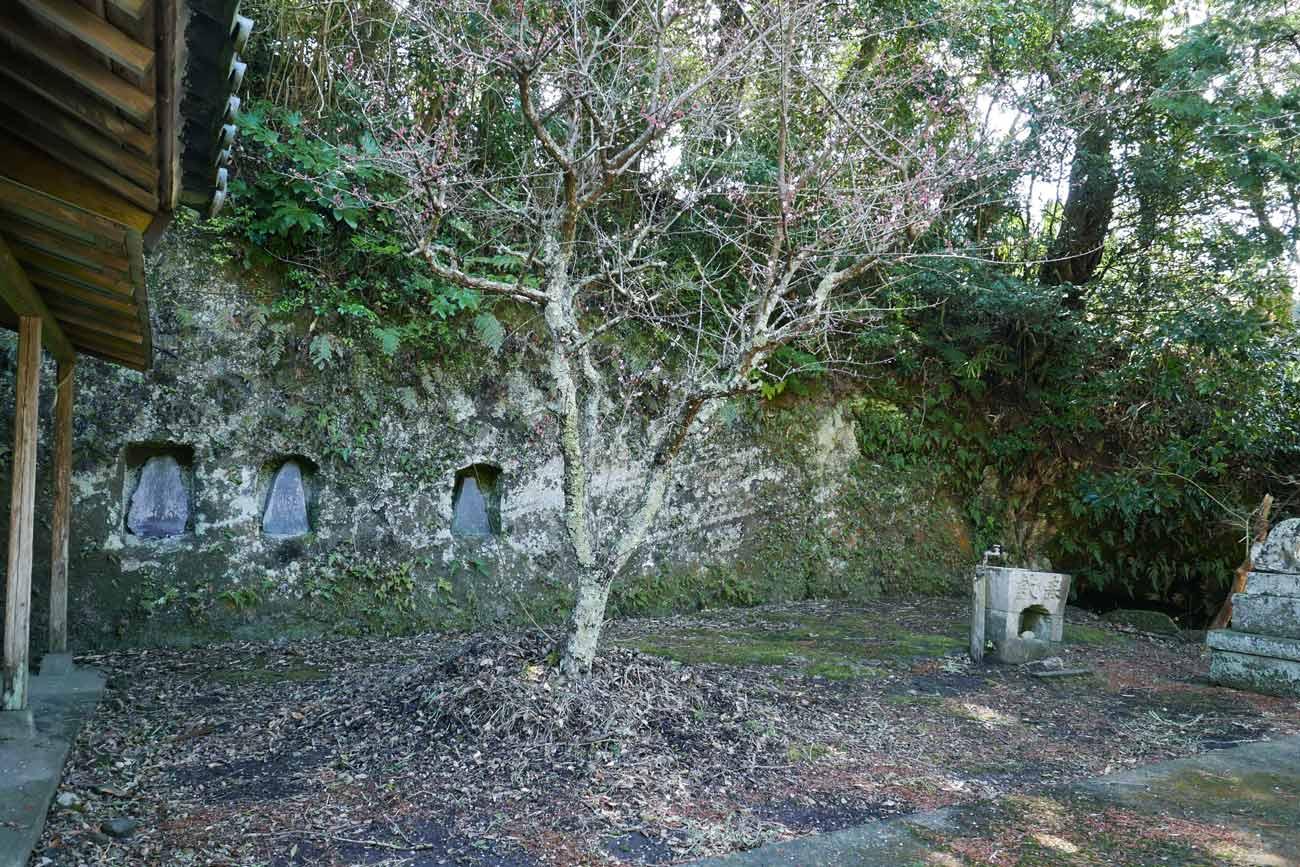拝殿右側の崖の画像