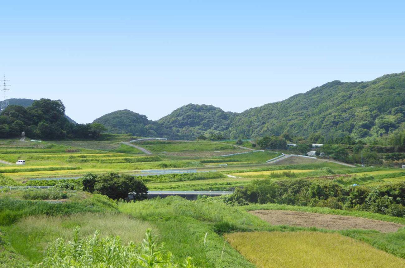 吉井農村公園付近の里山の画像
