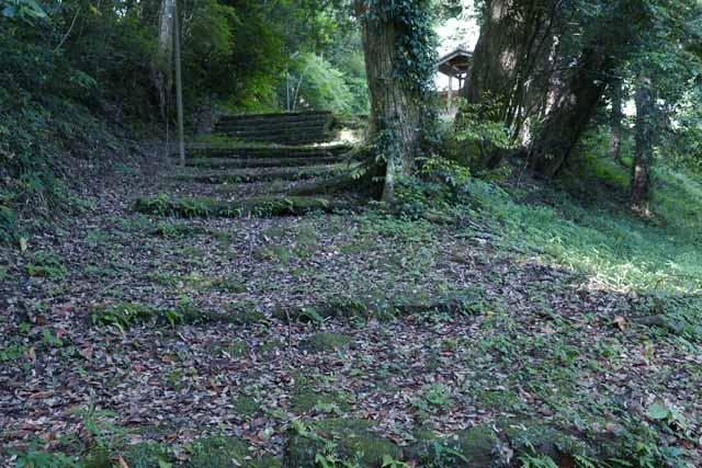 丸郷神社拝殿への階段の画像