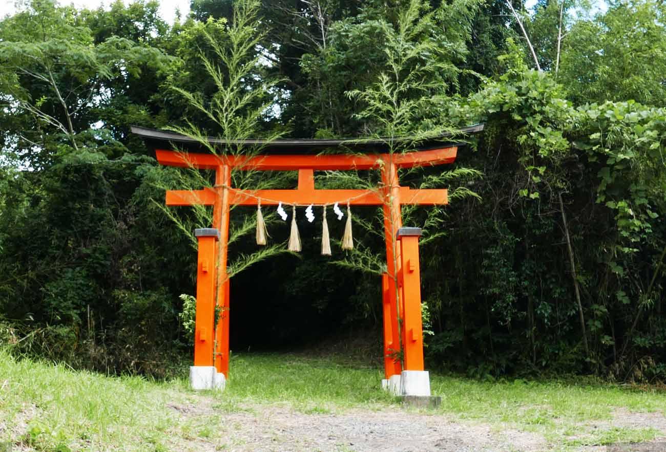 大井神社鳥居の画像