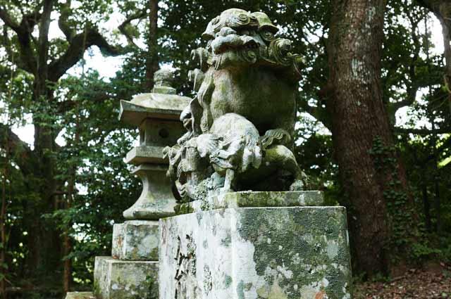 大井神社狛犬(右)の画像