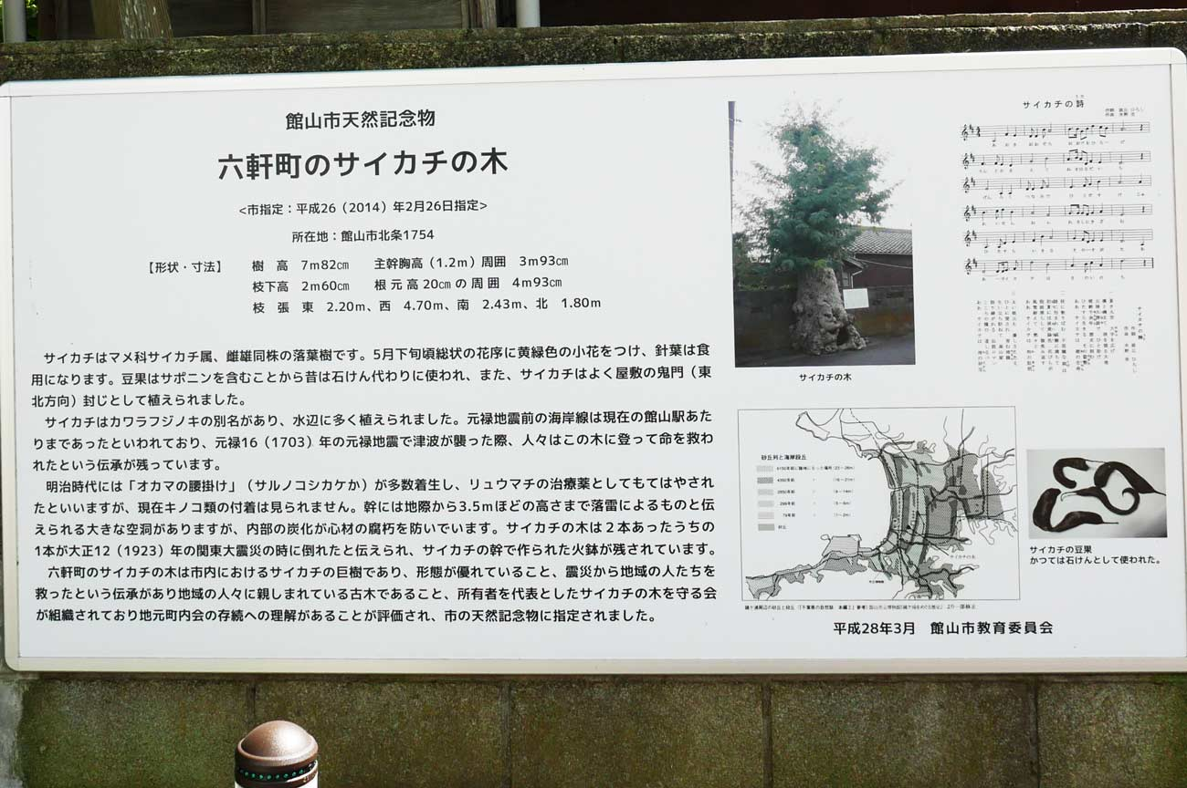 さいかちの木の案内板の画像