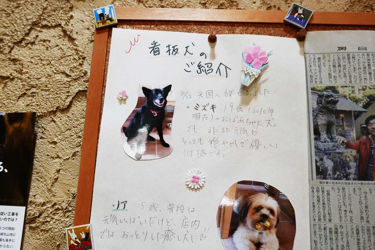 看板犬の画像