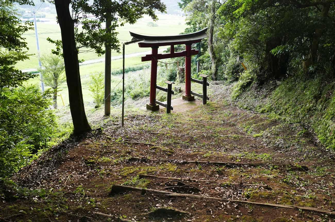 川戸神社の参道の階段の画像