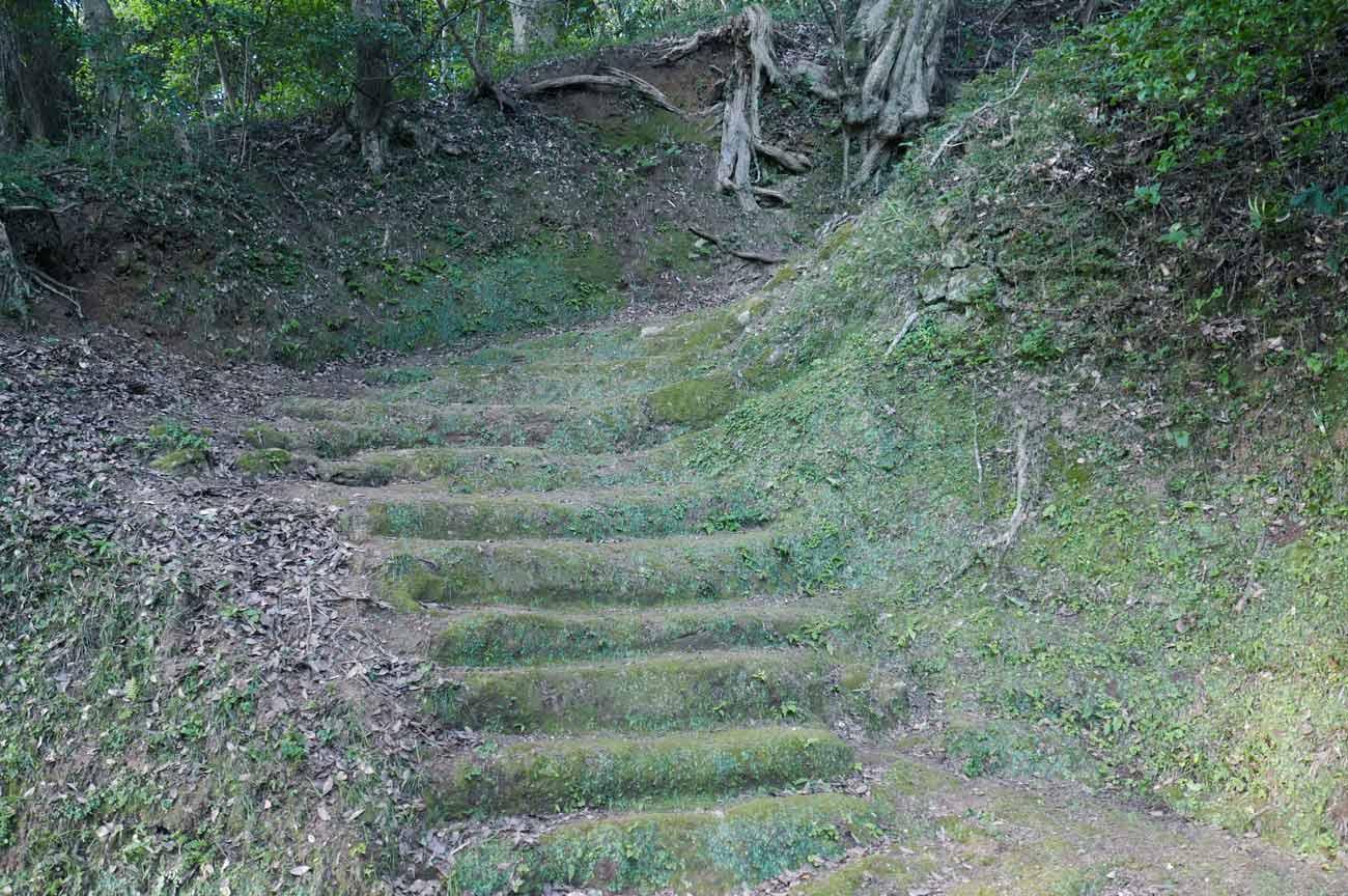 参道の階段画像