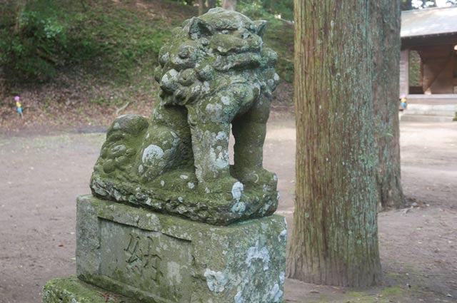 熊野神社狛犬(左)の画像