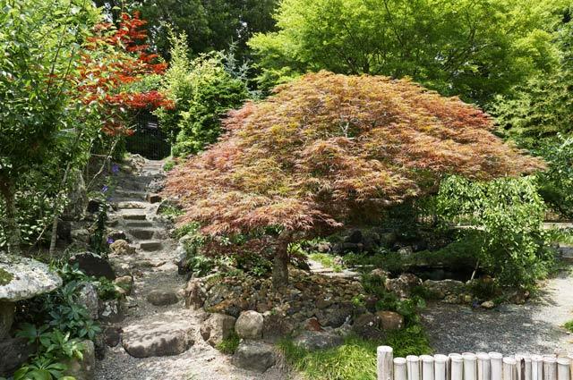 旧水田家住宅の庭園の画像