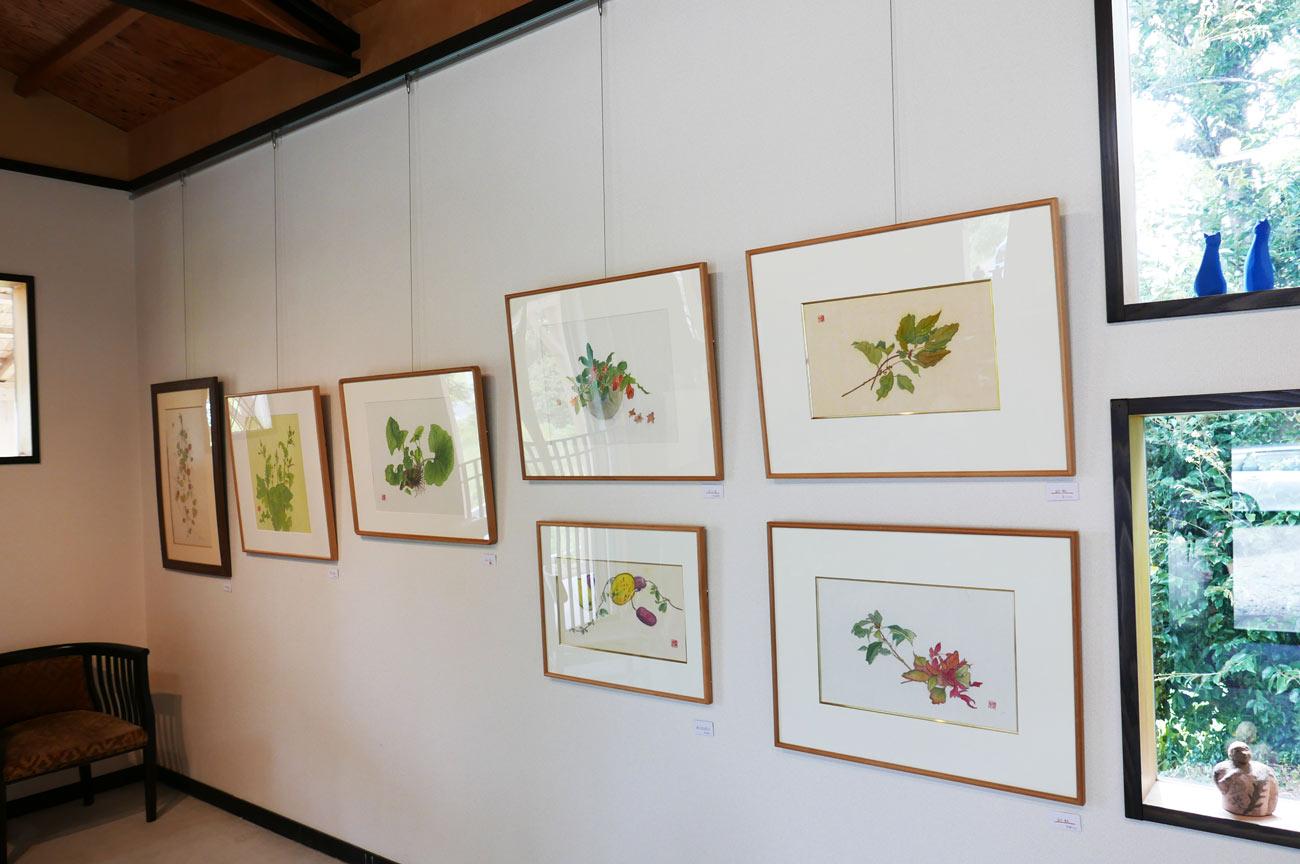 山野草の絵画画像