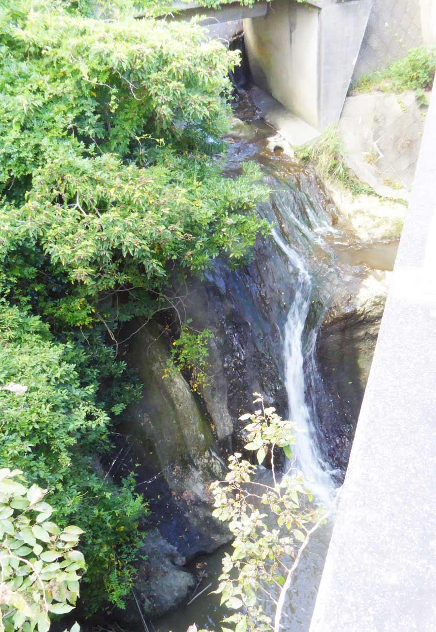 ザーザンボの滝の全景画像