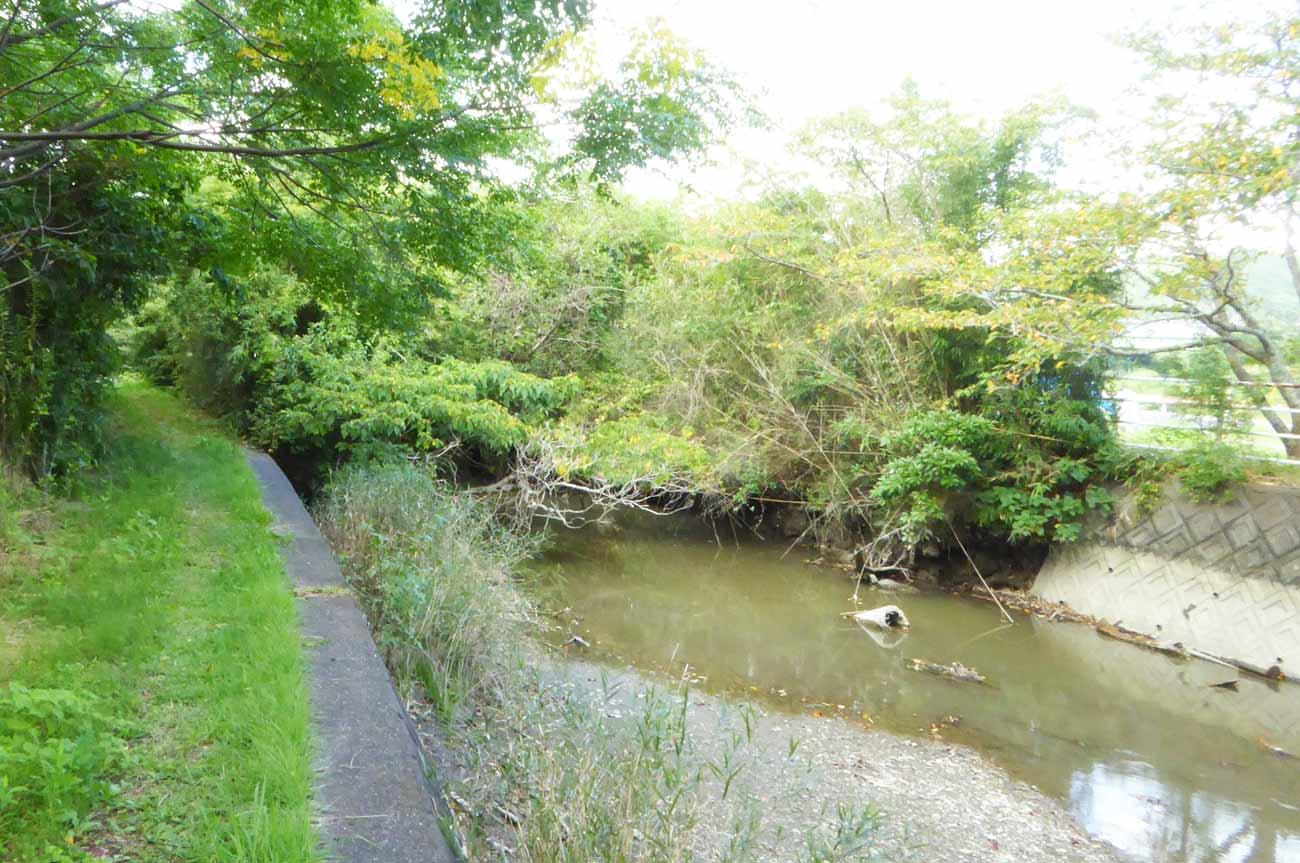 丹生川の画像