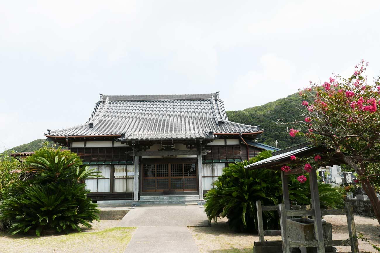 観乗院本堂と境内の画像