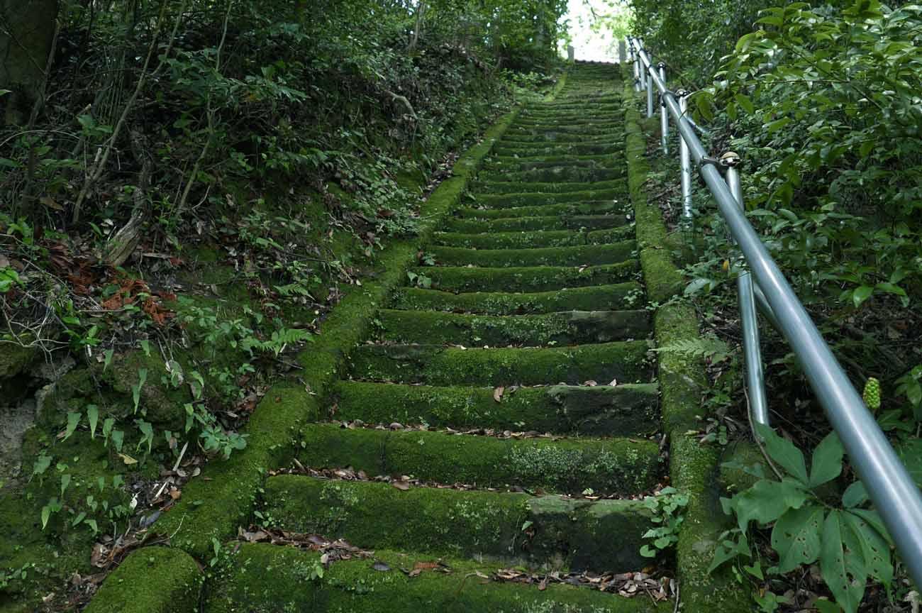 天満神社の長い参道の画像