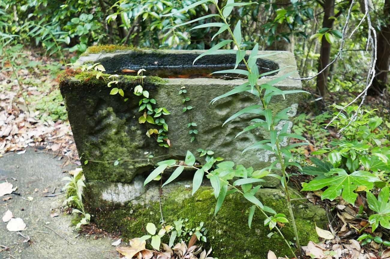 天満神社の手水石の画像