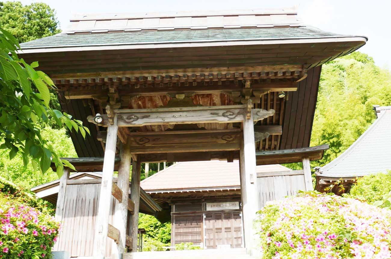 安楽寺中雀門(正面)の画像