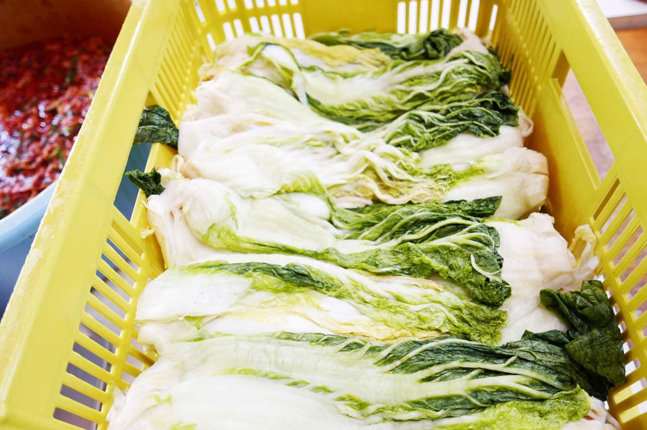 漬込み前の白菜の画像