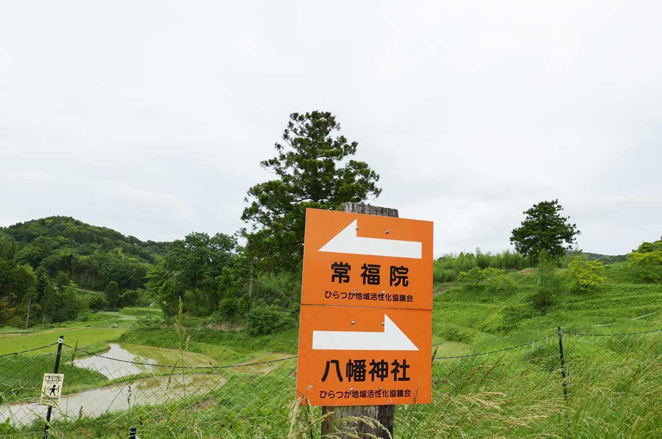常福院と八幡神社の看板の画像