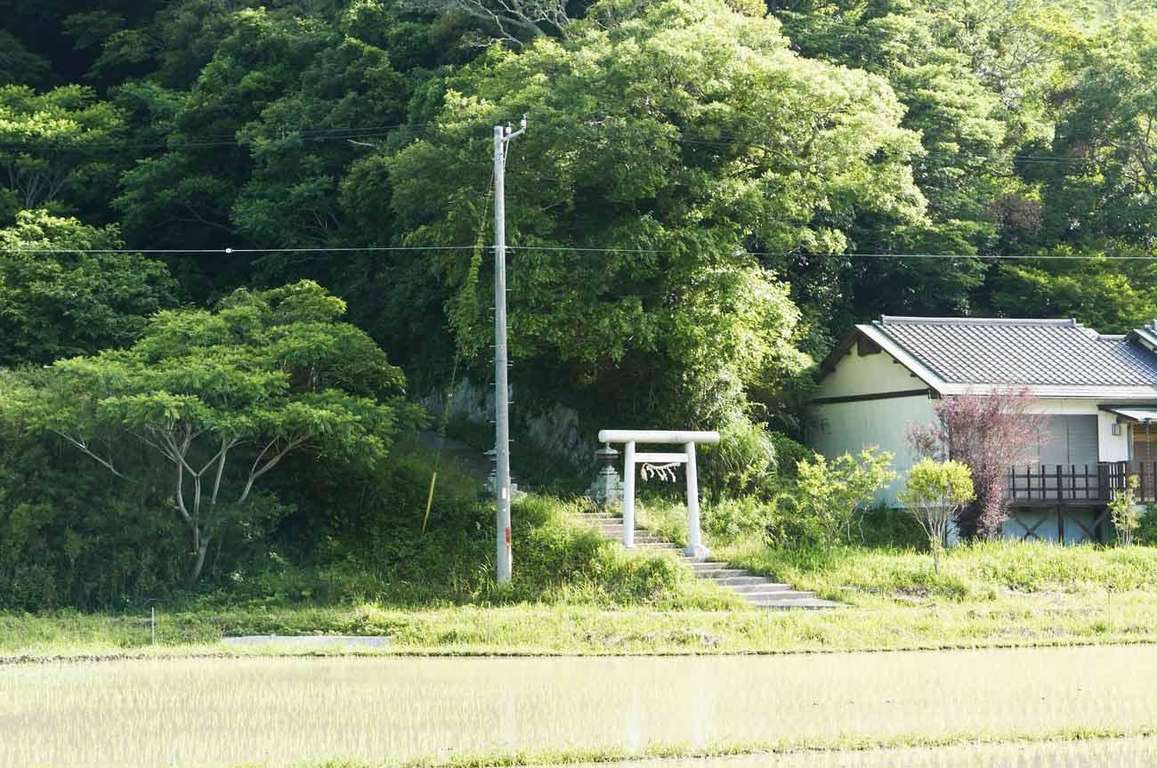 田園風景の中に鎮座する前田神社の画像