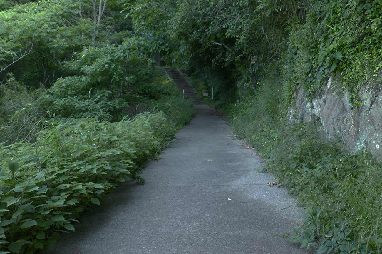 前田神社の参道の画像