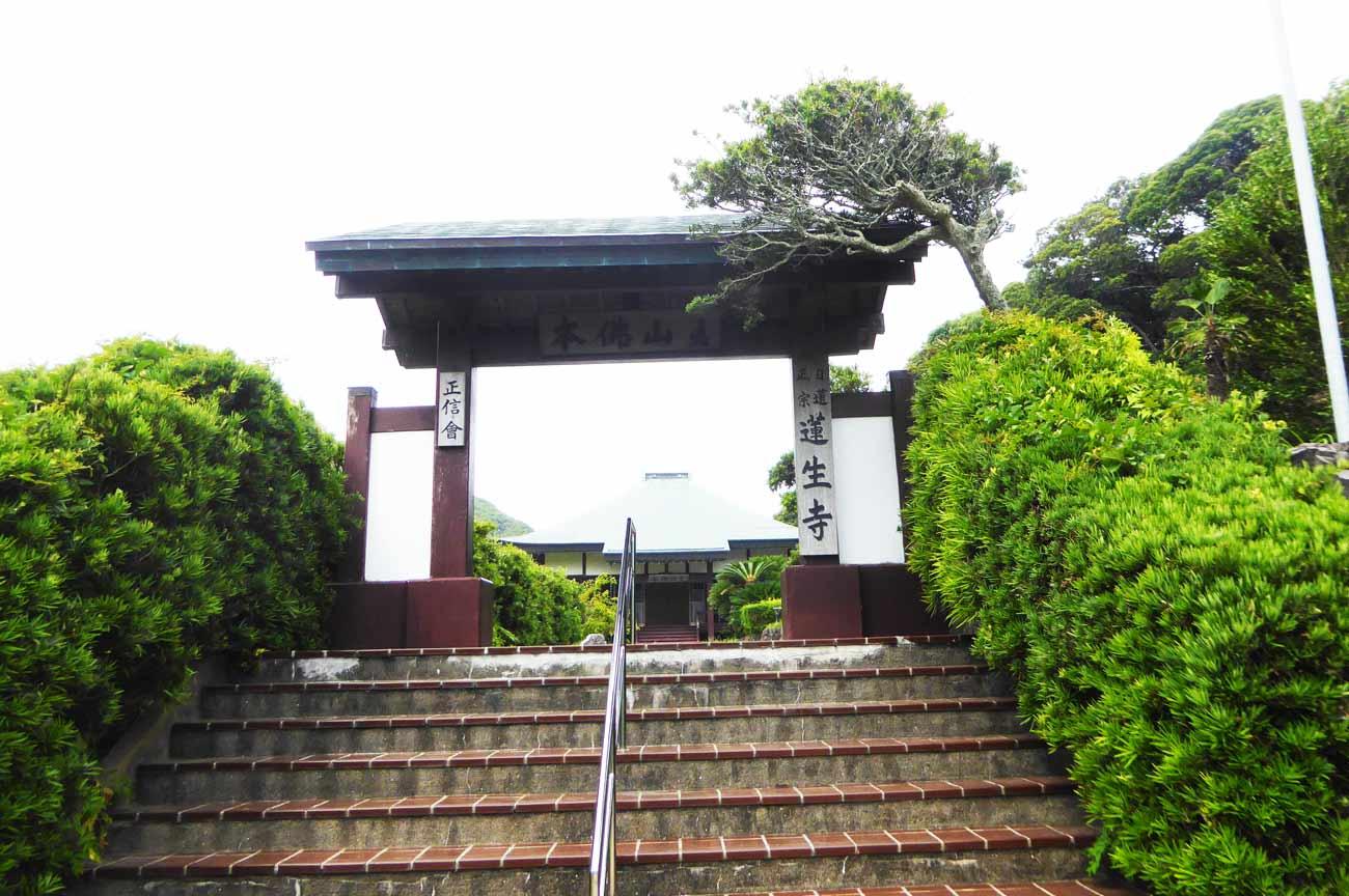 蓮生寺山門の画像