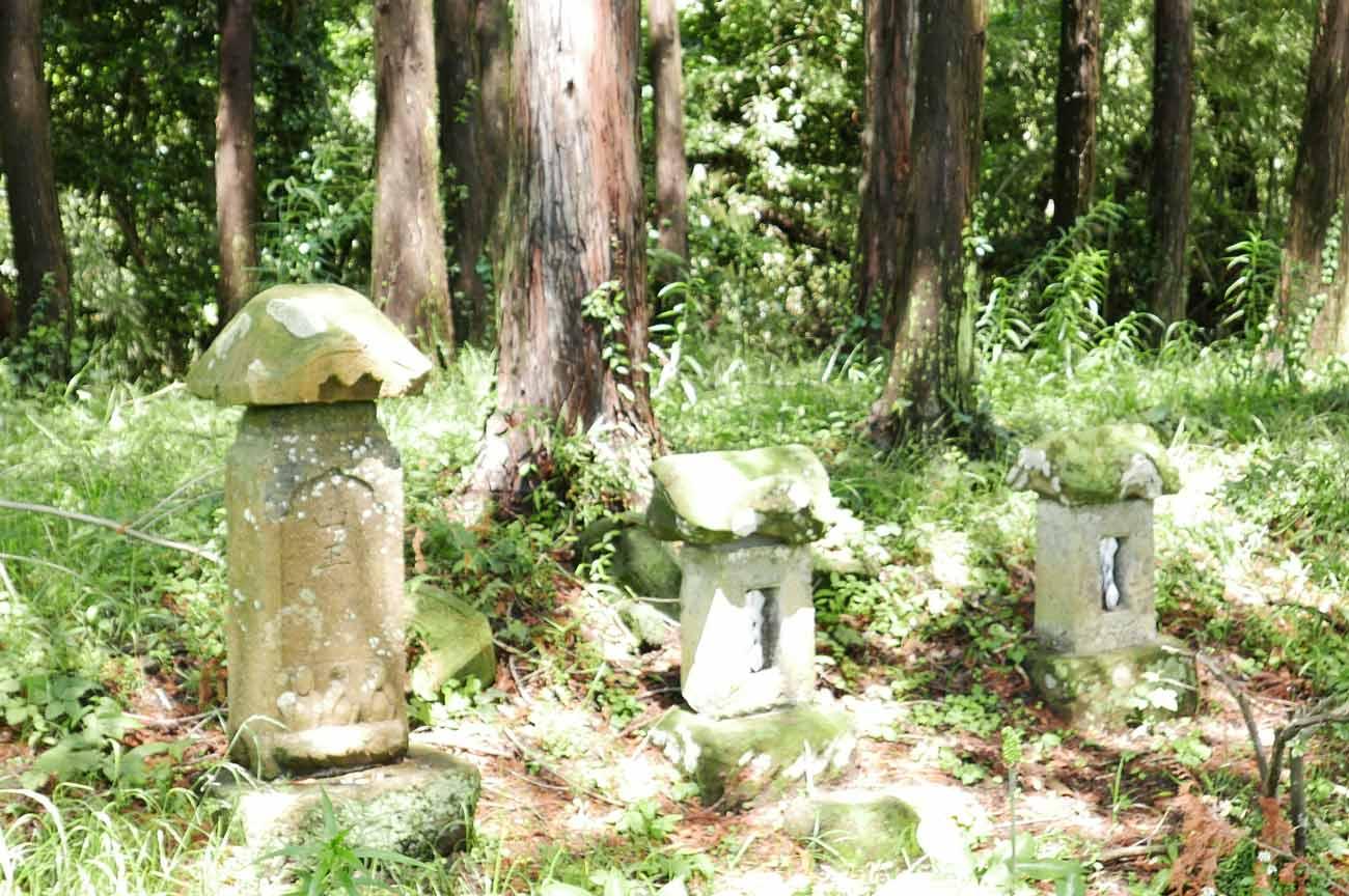 本殿左の石祠の画像