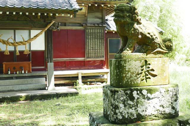 神明神社の狛犬(右)の画像