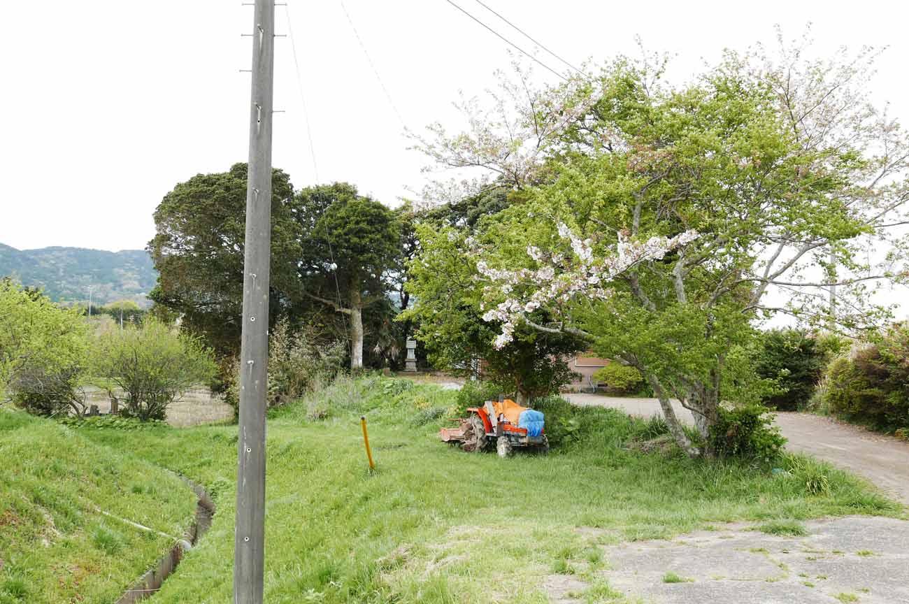 八雲神社周辺の田園風景
