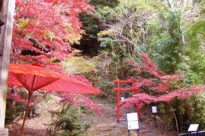 小末寺の紅葉の画像