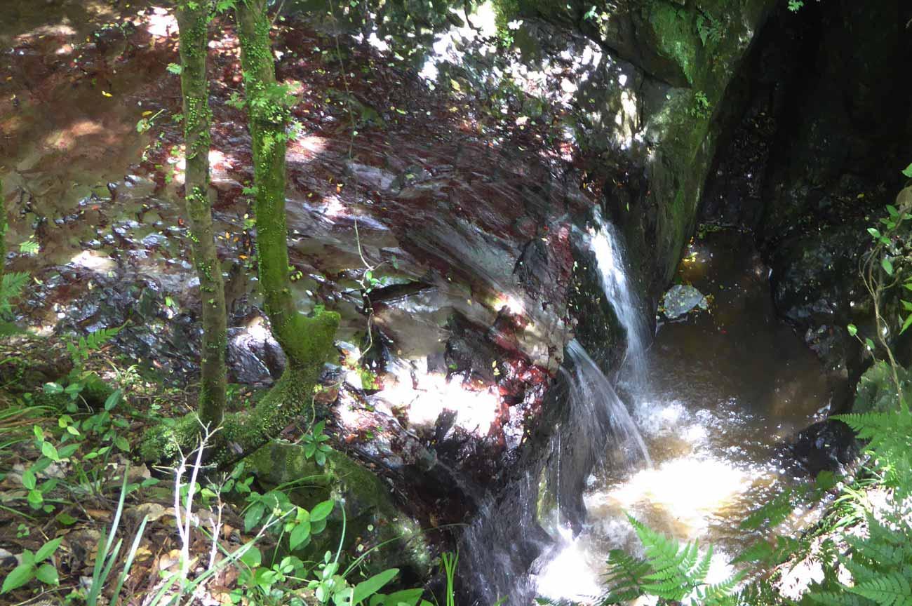 沢山不動滝の画像