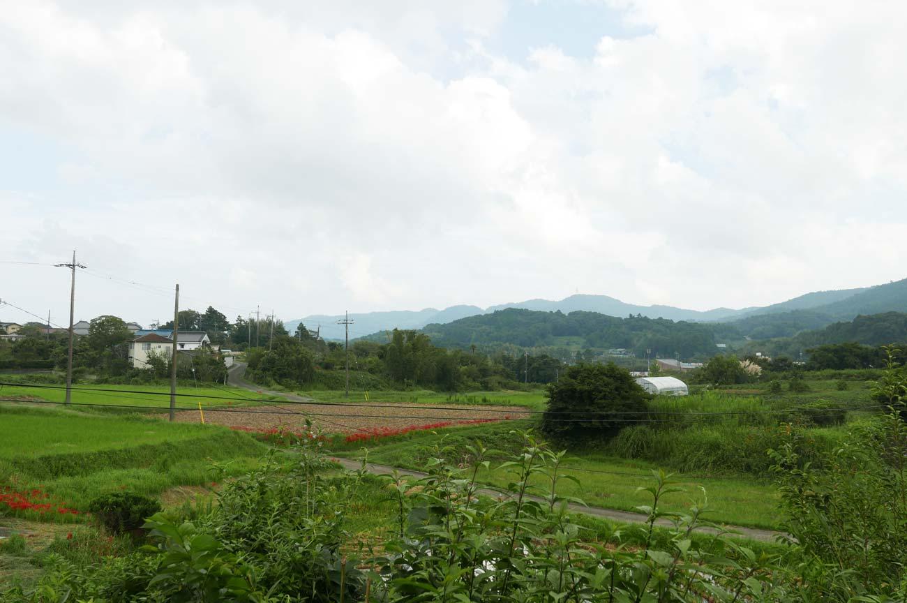 丘の上からの眺め南側