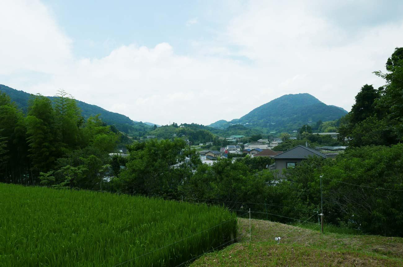 金光寺境内からの眺め