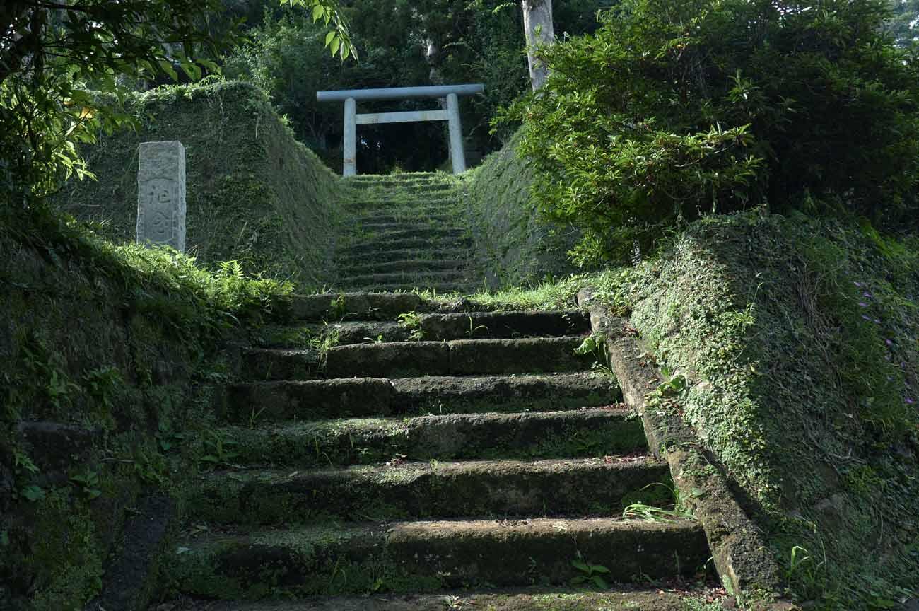 参道の階段の画像