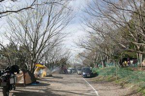 オートキャンプ場の画像