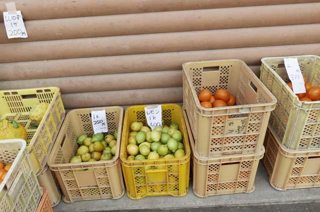 レモン販売コーナーの画像