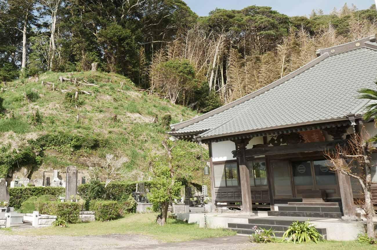 龍淵寺と裏山の画像