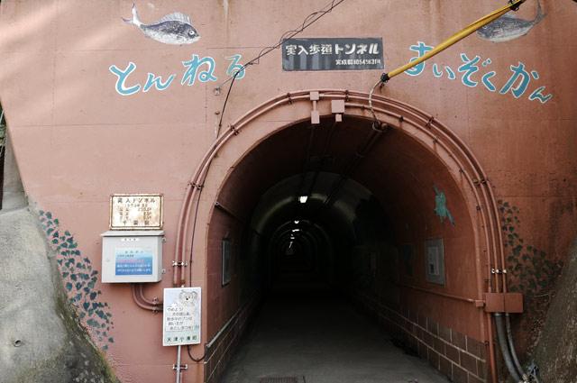 とんねる水族館の入口の画像