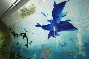 トンネル水族館のイルカの壁画