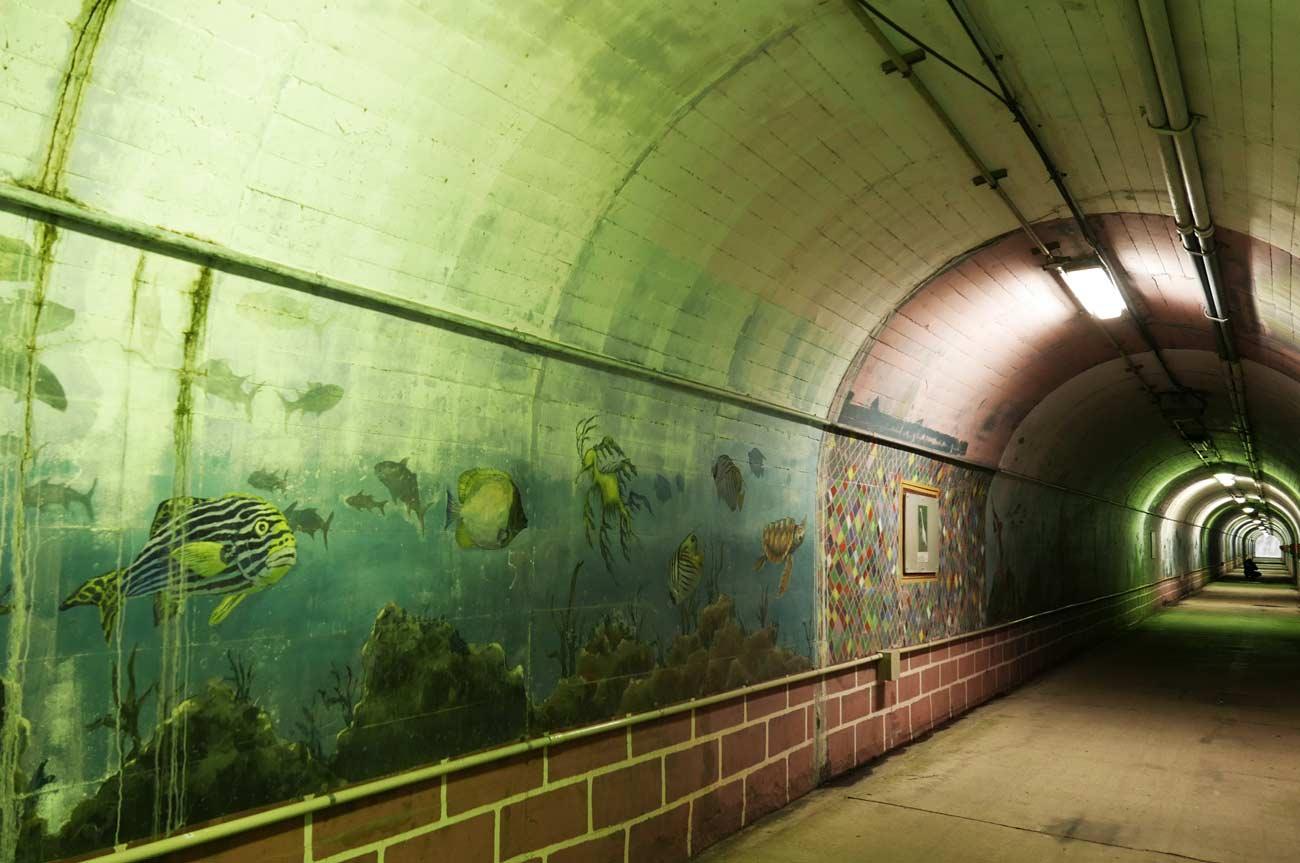 名称不明の魚の壁画