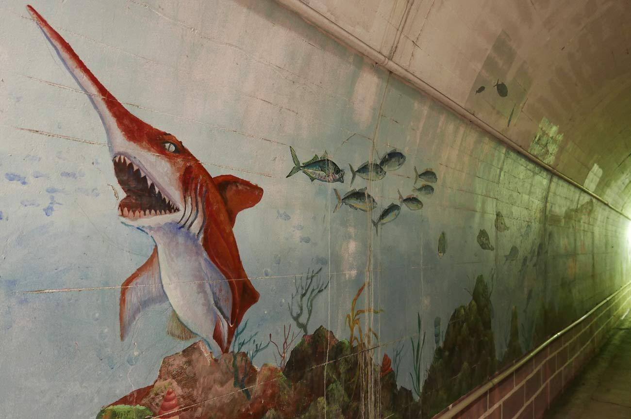 ツノがあるサメの壁画