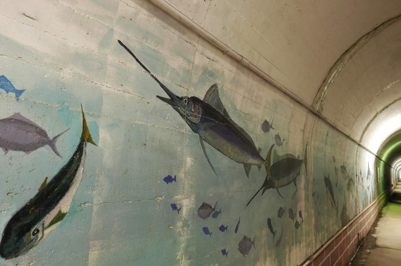 カジキの壁画