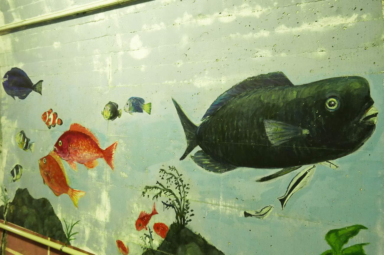 アオブダイの壁画