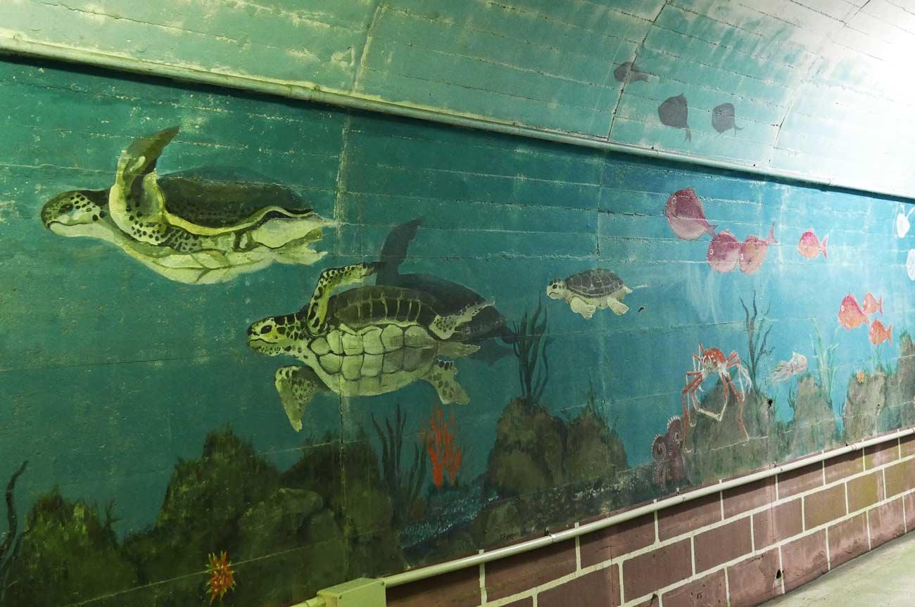 海亀の壁画