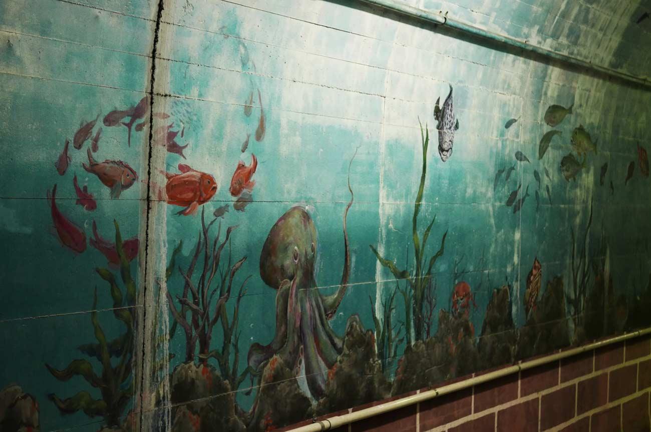 タコの壁画
