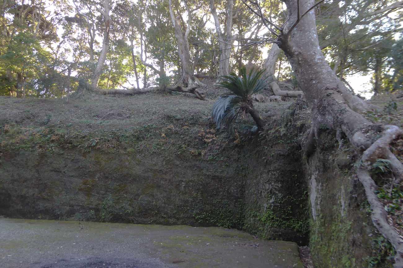 熱田神社境内の岩の画像